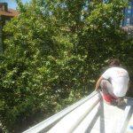 Cam Balkon Küpeşte Montajı